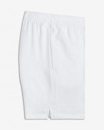 Nike Dry Shorts  Junior